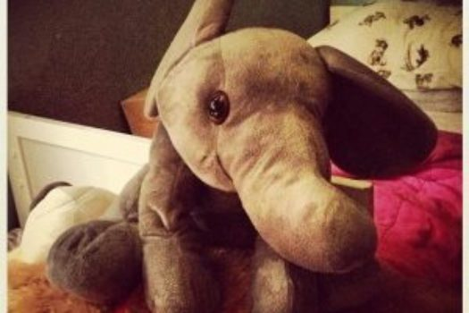 Day 3 – Elle the Elephant