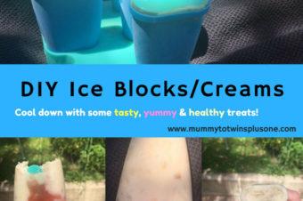 DIY Ice Cream or Ice Blocks