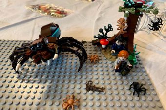 The Pains and Joy of Helping With LEGO